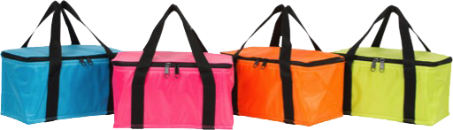 Cooler Warmer Bag  b